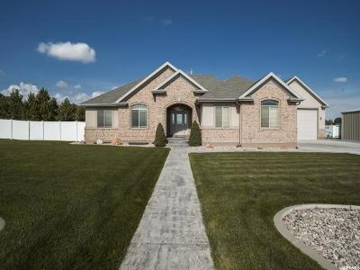 Grantsville Single Family Home For Sale: 550 Christley Ln