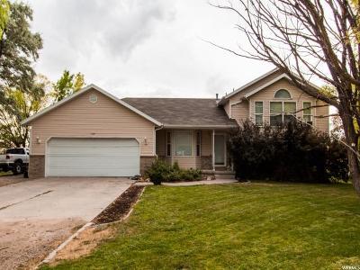 Grantsville Single Family Home For Sale: 510 S Hale St