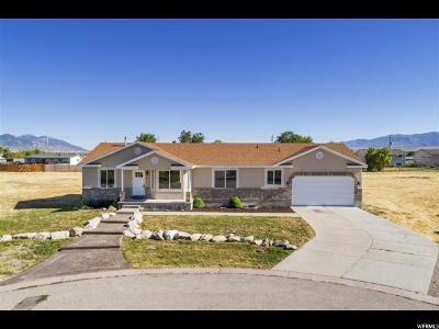 Grantsville Single Family Home For Sale: 40 N Trackside Cir