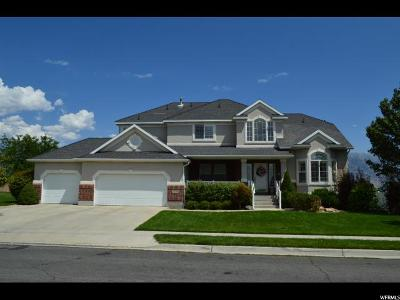 Lehi Single Family Home For Sale: 2290 N Carter