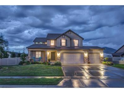 Spanish Fork Single Family Home For Sale: 963 S River Ridge Ln W
