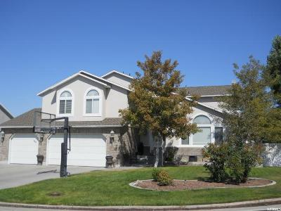 Stansbury Park Single Family Home For Sale: 238 Lakeview N