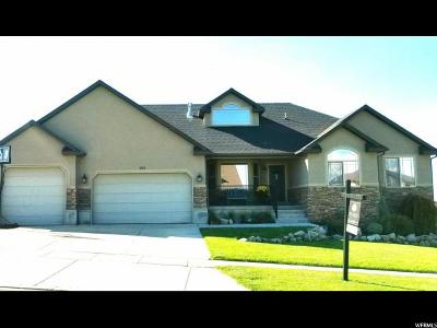 Saratoga Springs Single Family Home For Sale: 424 W Misty Sage Way S