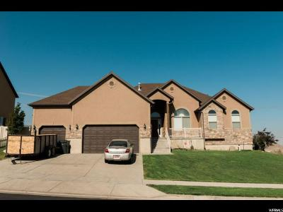 West Valley City Single Family Home For Sale: 4614 S Cape Ridge Ln