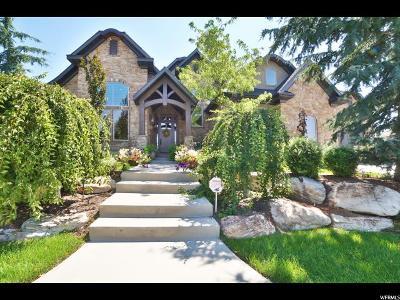 Sandy Single Family Home For Sale: 11175 S Farnsworth Ln E