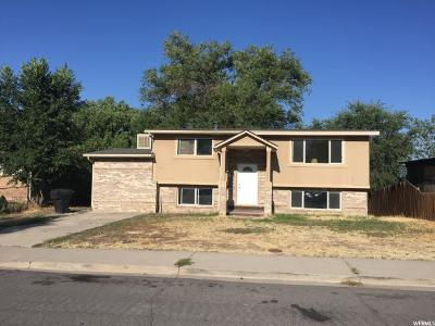 Orem Single Family Home For Sale: 495 N 1025 W