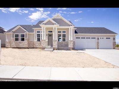 Salem Single Family Home For Sale: 1008 S 100 E