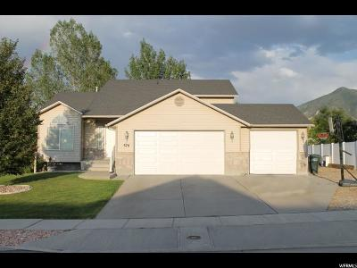 Tooele Single Family Home For Sale: 876 N Fox Run Dr.
