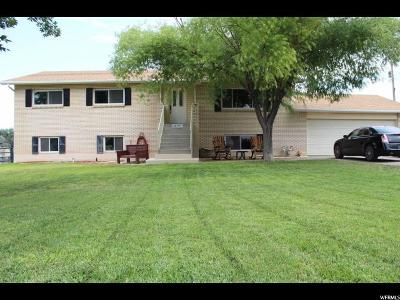 Magna Single Family Home For Sale: 2979 S 7750 W