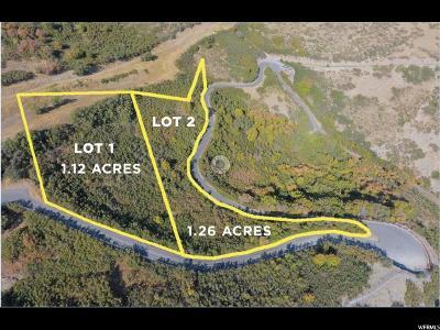 Salt Lake City Residential Lots & Land For Sale: 375 S Got Teeth Ln E
