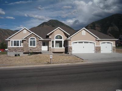Salem Single Family Home For Sale: 711 S 500 E