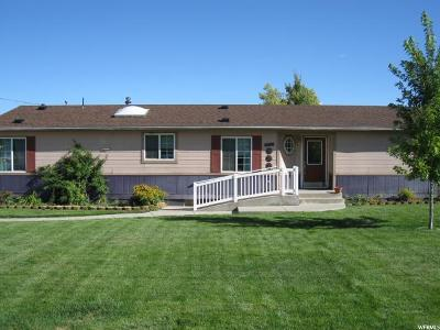 Santaquin Single Family Home For Sale: 82 W 900 S