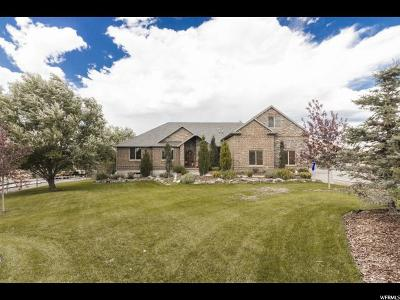 Eagle Mountain Single Family Home For Sale: 1821 E Ranch Rd