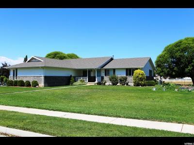 Spanish Fork Single Family Home For Sale: 1741 E 1310 S