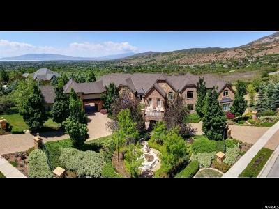Alpine Single Family Home For Sale: 1567 N Prospect Ln E