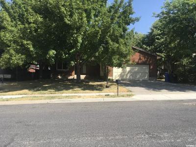 Logan Single Family Home For Sale: 541 E 1200 N