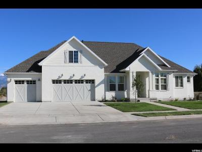 American Fork Single Family Home For Sale: 944 E 1000 N #17