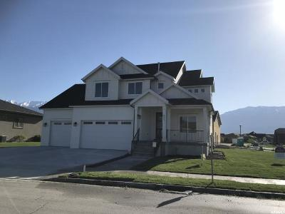 Orem Single Family Home For Sale: 471 S 2100 W