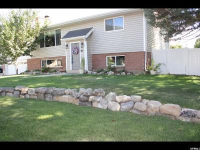 Springville Single Family Home For Sale: 510 E 1100 S