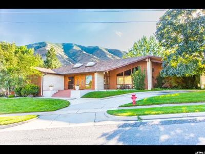 Springville Single Family Home For Sale: 177 S Canyon Ave