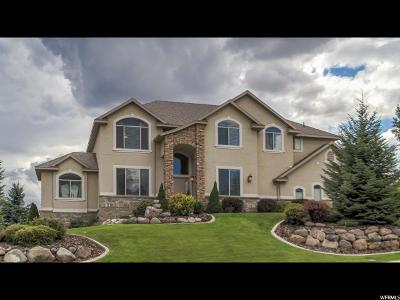 Alpine Single Family Home For Sale: 316 W Meadowlark Dr N