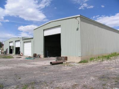 Castle Dale UT Commercial For Sale: $350,000