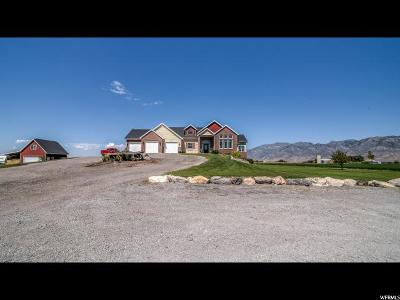 Brigham City Single Family Home For Sale: 3150 W Forest St N