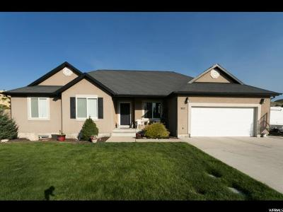 Payson Single Family Home For Sale: 957 S 640 E
