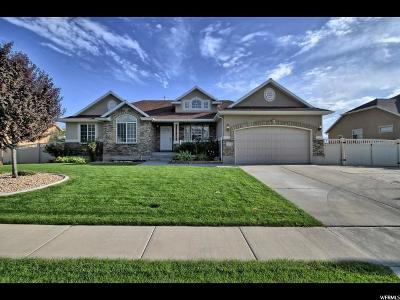 Lehi Single Family Home For Sale: 1504 E 330 N