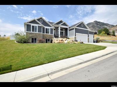 Pleasant Grove Single Family Home For Sale: 1245 E 300 N