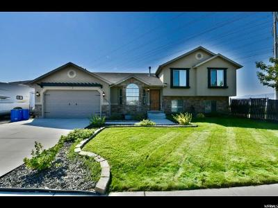 Lehi Single Family Home For Sale: 1013 W 975 S