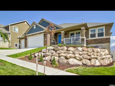 Lehi Single Family Home For Sale: 4202 N 400 W
