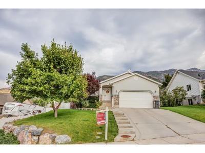Santaquin Single Family Home For Sale: 367 S 690 E