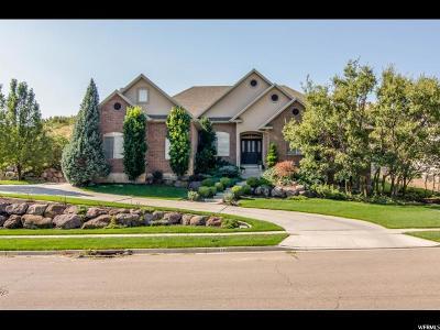 Alpine Single Family Home For Sale: 636 High Ridge Ln