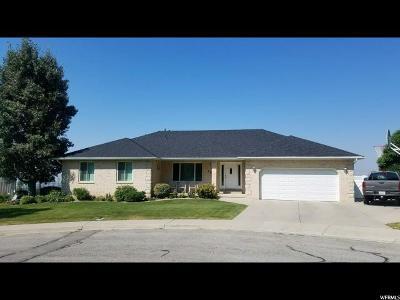 Pleasant Grove Single Family Home For Sale: 1345 N 730 E