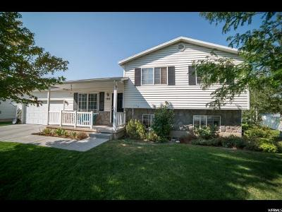 Lehi Single Family Home For Sale: 1410 W 50 S