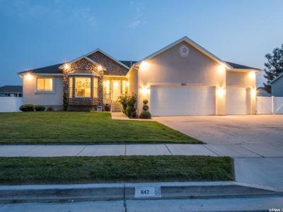 Lehi Single Family Home For Sale: 647 W Dwayne Dr