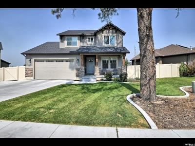 Payson Single Family Home For Sale: 521 E Canyon Rd