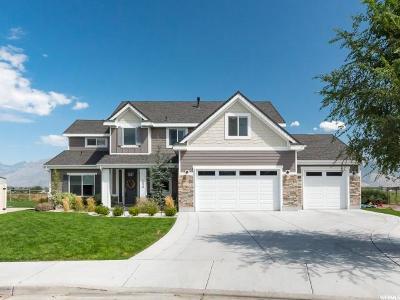 Lehi Single Family Home For Sale: 1639 S 900 E