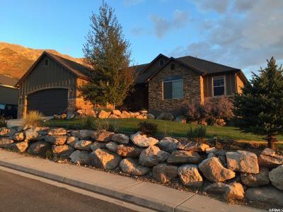 Santaquin Single Family Home For Sale: 942 E 430 S