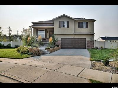 Lehi Single Family Home For Sale: 1026 S 730 W