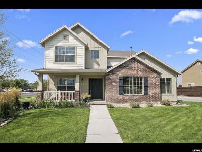 Springville Single Family Home For Sale: 13 N 1100 W
