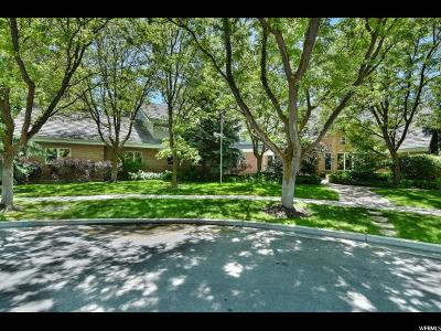 Orem Single Family Home For Sale: 482 E 1500 N