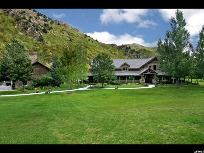 Springville Single Family Home For Sale: 693 N Hobble Creek Canyon Rd E
