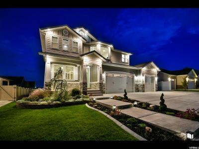 West Jordan Single Family Home For Sale: 9469 S Echo Ridge Dr