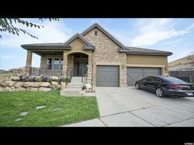 Lehi Single Family Home For Sale: 5045 N Shadow Wood