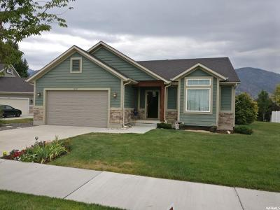 Provo Single Family Home For Sale: 1379 S 960 W