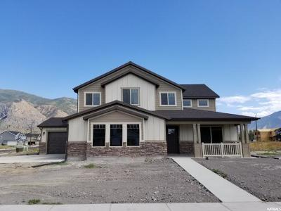Springville Single Family Home For Sale: 224 N 800 W #LOT 6