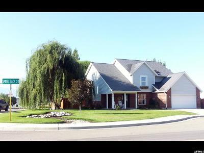 Springville Single Family Home For Sale: 557 W Saddle Back Cir S
