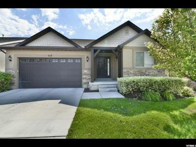Orem Single Family Home For Sale: 613 S 1810 W